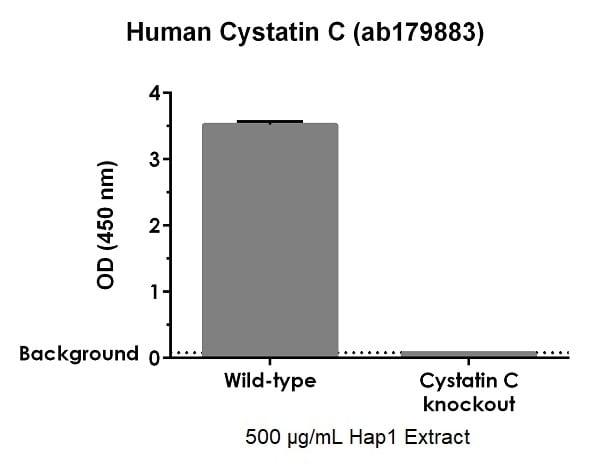 ab179883 specifically detects cystatin C in human HAP1 cells.