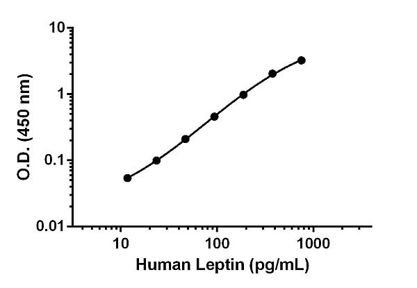 Example of Leptin standard curve.