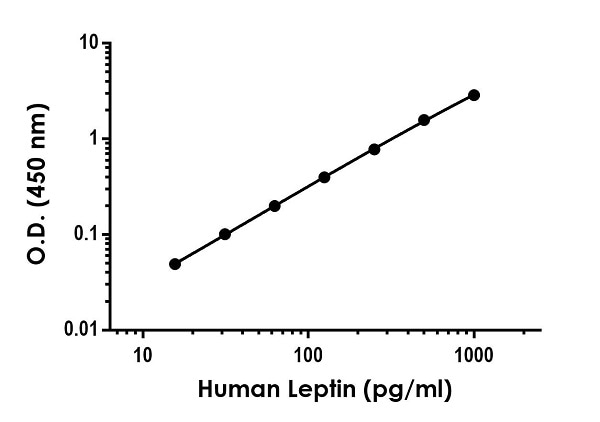 Example of human Leptin standard curve in Sample Diluent NS.