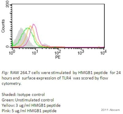 Functional Studies - Human HMGB1 peptide (ab18650)
