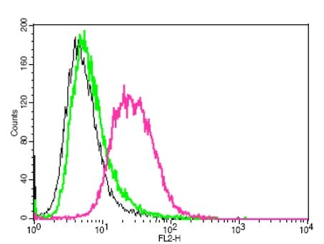 Flow Cytometry - Anti-pan-AKT antibody (ab18785)