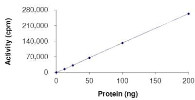 Functional Studies - Recombinant human FGFR2 (mutated K526 E) protein (ab180049)