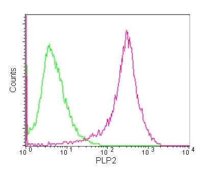 Flow Cytometry - Anti-PLP2 antibody [EPR14238(B)] (ab180131)