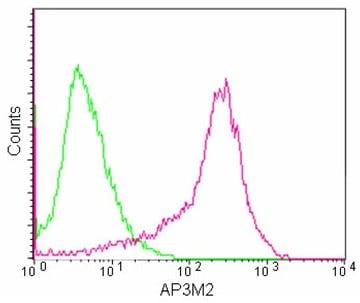 Flow Cytometry - Anti-AP3M2 antibody [EPR12965] - N-terminal (ab180138)