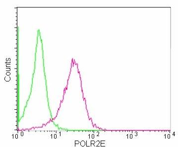 Flow Cytometry (Intracellular) - Anti-POLR2E/rpb5 antibody [EPR11750] (ab180151)