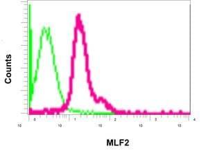 Flow Cytometry - Anti-MLF2 antibody [EPR10245(2)] - C-terminal (ab180184)