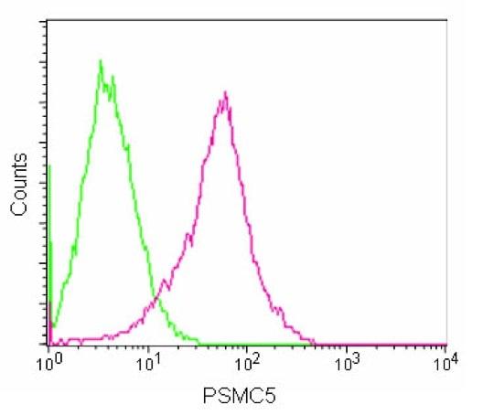 Flow Cytometry - Anti-PSMC5 antibody [EPR13566(B)] - C-terminal (ab180495)