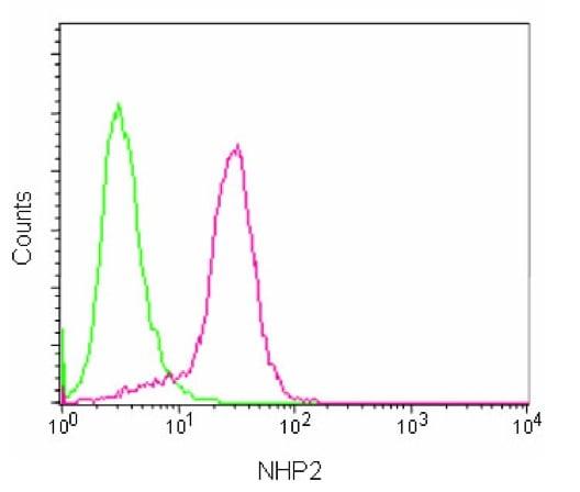 Flow Cytometry - Anti-NHP2 antibody [EPR12404] (ab180498)