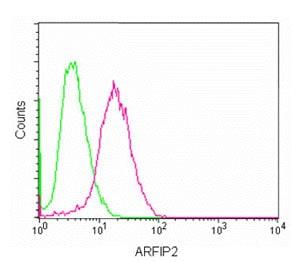 Flow Cytometry - Anti-POR1 antibody [EPR11943] (ab180503)
