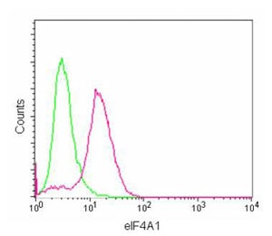 Flow Cytometry - Anti-eIF4A1 antibody [EPR14505(B)] - N-terminal (ab180506)