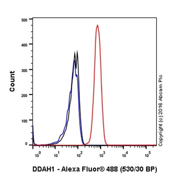 Flow Cytometry - Anti-DDAH1 antibody [EPR13922] (ab180599)