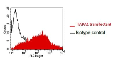 Flow Cytometry - Anti-CD81 antibody [QV-6A8-S3] (ab180771)