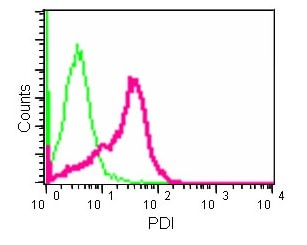Flow Cytometry - Anti-PDIA2/PDIP antibody [EPR12212] (ab180931)