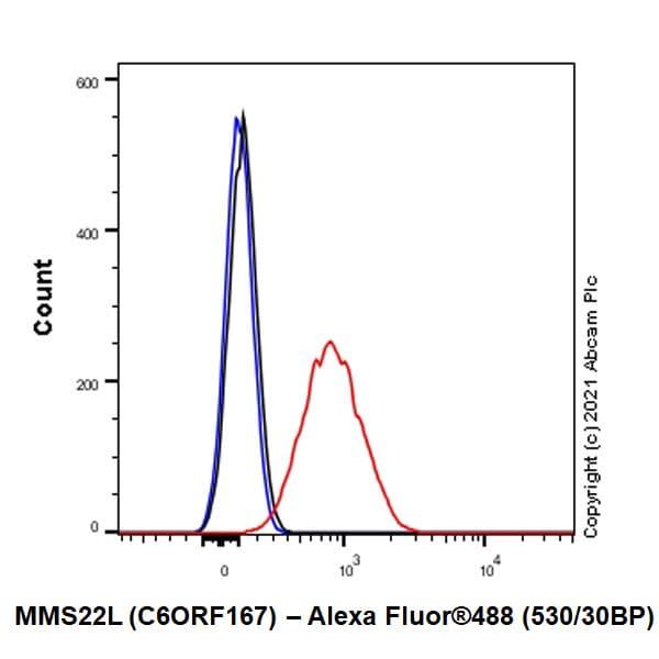 Flow Cytometry - Anti-MMS22L (C6ORF167) antibody [EPR13654] (ab181047)
