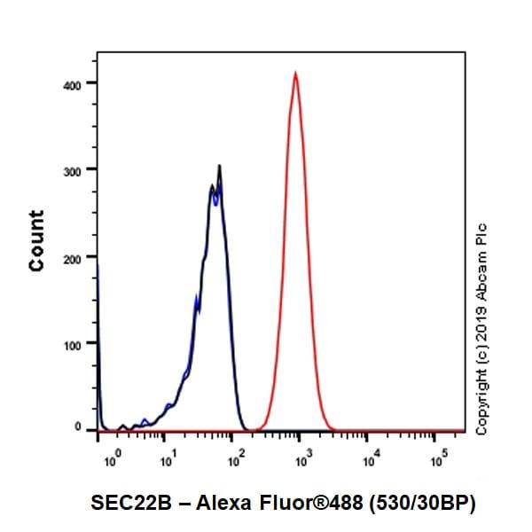 Flow Cytometry - Anti-SEC22B antibody [EPR12335] (ab181076)