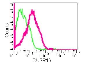 Flow Cytometry (Intracellular) - Anti-DUSP16 antibody [EPR13583] (ab181088)