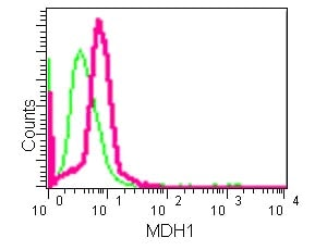 Flow Cytometry - Anti-MDH1 antibody [EPR13596(B)] (ab181091)