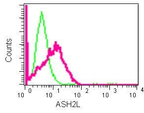 Flow Cytometry - Anti-ASH2L antibody [EPR13106] (ab181117)