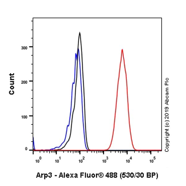 Flow Cytometry (Intracellular) - Anti-Arp3 antibody [EPR10429] - C-terminal (ab181164)