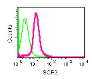 Flow Cytometry (Intracellular) - Anti-SCP3 antibody [EPR12695(B)] (ab181354)
