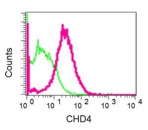 Flow Cytometry - Anti-CHD4 antibody [EPR12229] (ab181370)
