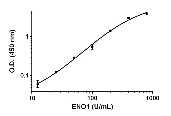 Example of ENO1 standard curve.