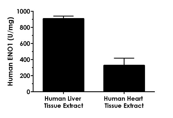 Extracts of human liver and human heart were analyzed with this kit.