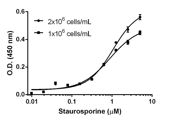 Example of staurosporine IC50 determination