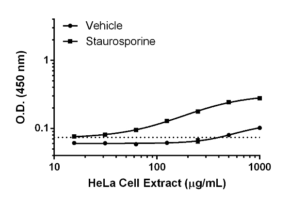 Titration of HeLa extract