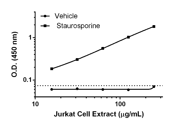 Titration of Jurkat extract