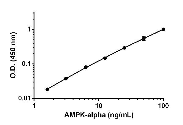 Example of AMPK-alpha 1 standard curve