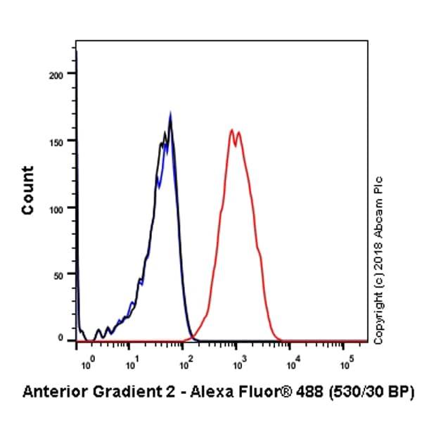 Flow Cytometry - Anti-Anterior Gradient 2 antibody [EPR3278] - BSA and Azide free (ab181829)