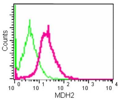 Flow Cytometry - Anti-MDH2 antibody [EPR14883(B)] (ab181857)