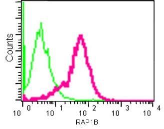 Flow Cytometry (Intracellular) - Anti-RAP1A + RAP1B antibody [EPR14815(B)] (ab181858)