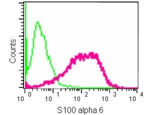 Flow Cytometry - Anti-S100 alpha 6/PRA antibody [EPR13084-69] (ab181975)
