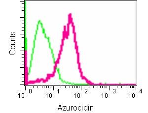 Flow Cytometry (Intracellular) - Anti-Azurocidin antibody [EPR9503] (ab181989)