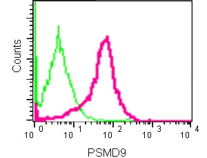 Flow Cytometry - Anti-PSMD9 antibody [EPR12947] (ab181998)