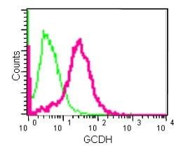 Flow Cytometry - Anti-GCDH/GCD antibody [EPR14864(B)] (ab182152)
