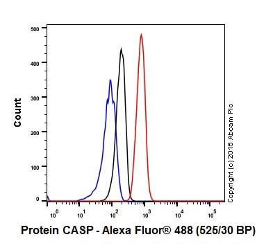 Flow Cytometry - Anti-Protein CASP antibody [EPR18806] (ab182216)
