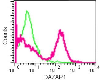 Flow Cytometry - Anti-DAZAP1 antibody [EPR14400] (ab182558)