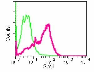 Flow Cytometry - Anti-Scc4 antibody [EPR14390] (ab183033)