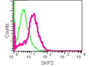 Flow Cytometry - Anti-SKP2 antibody [EPR3305(2)] (ab183039)