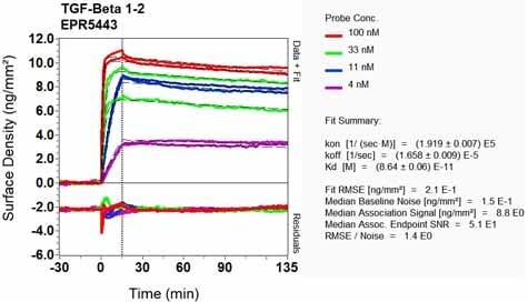 OI-RD Scanning - Anti-TGF beta 1 + 2 antibody [EPR5443] - BSA and Azide free (ab183133)