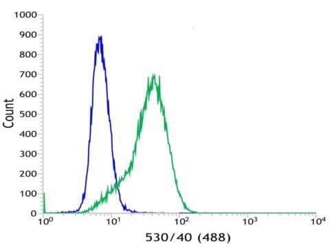 Flow Cytometry - Anti-Bcl6 antibody [SP155] - C-terminal (ab183308)