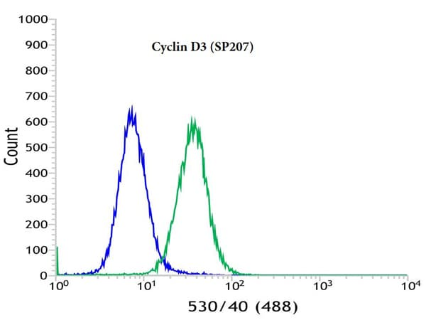 Flow Cytometry - Anti-Cyclin D3/CCND3 antibody [SP207] (ab183338)