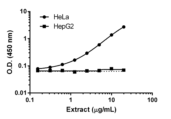 Titration of HeLa and HepG2 extracts within the working range of the assay