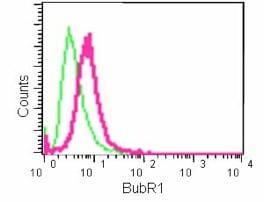 Flow Cytometry (Intracellular) - Anti-BubR1 antibody [EPR12259(2)] (ab183496)