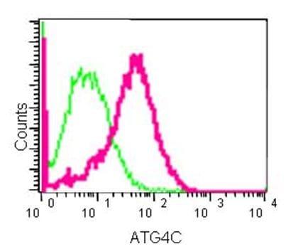 Flow Cytometry (Intracellular) - Anti-ATG4C antibody [EPR15001] (ab183516)
