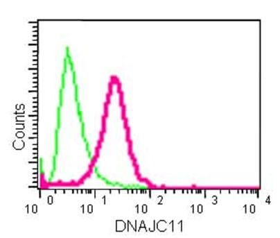 Flow Cytometry - Anti-DNAJC11 antibody [EPR15065(B)] - C-terminal (ab183518)