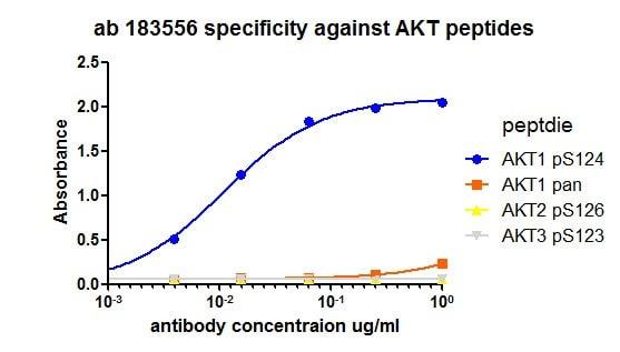 ELISA - Anti-AKT1 (phospho S124) antibody [EPR17680] (ab183556)